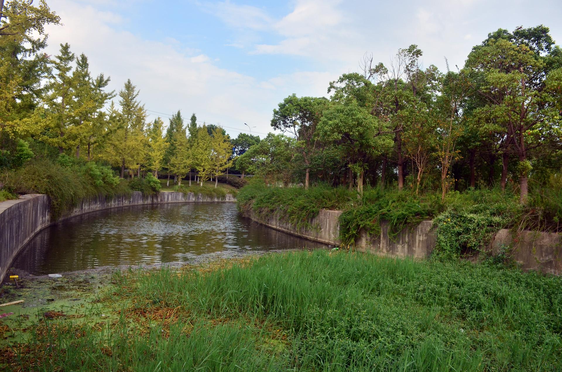 娄东生态园太仓娄东商务休闲垂钓中心风景秀丽 这里是太仓 摄影 第26张