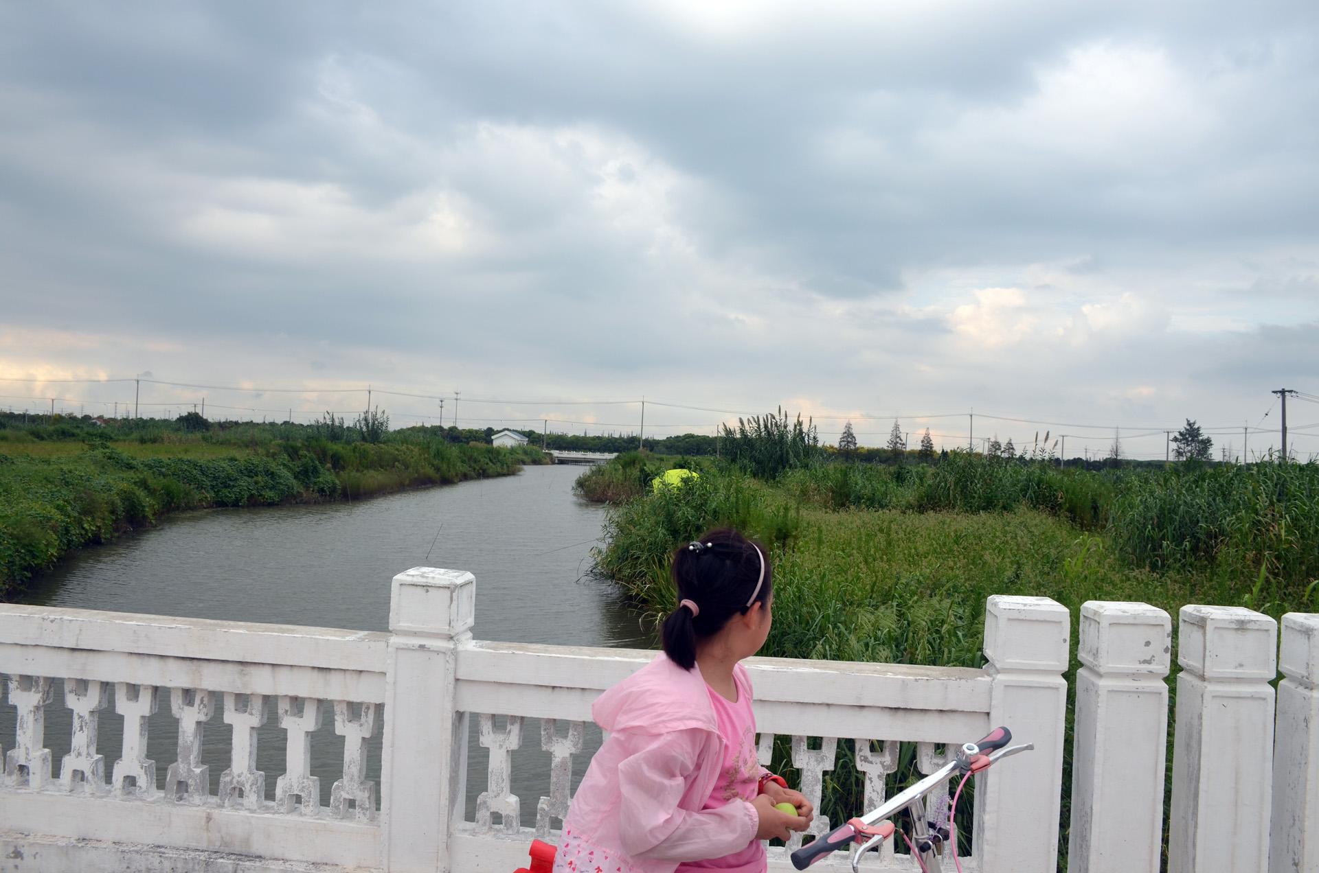远景多角度太仓海天禅寺红庙的宏伟和江南缥缈正在建设的后殿 这里是太仓 摄影 第15张