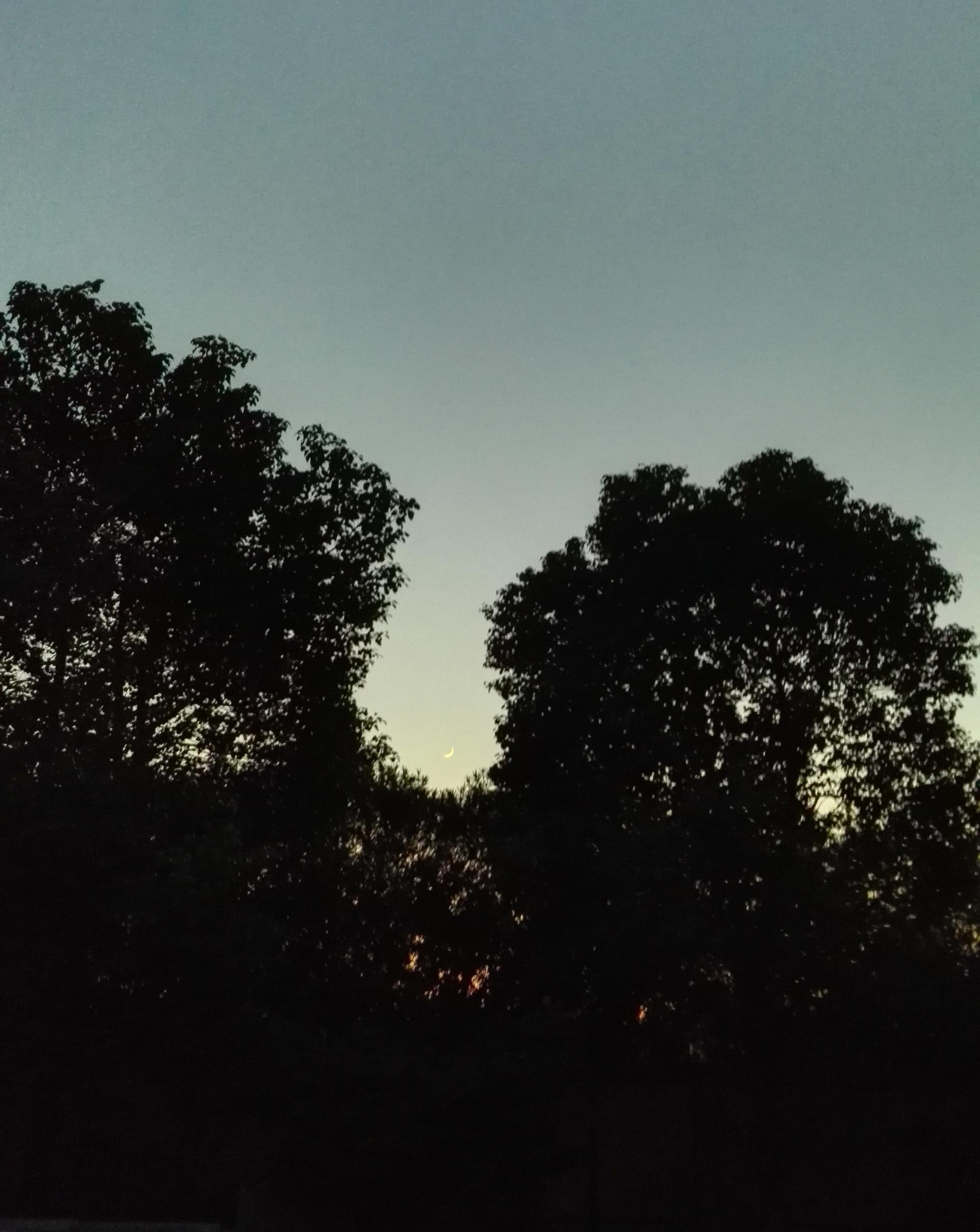 太仓秋月凄景正悄悄的爬上来-渔家傲·挂怀配图