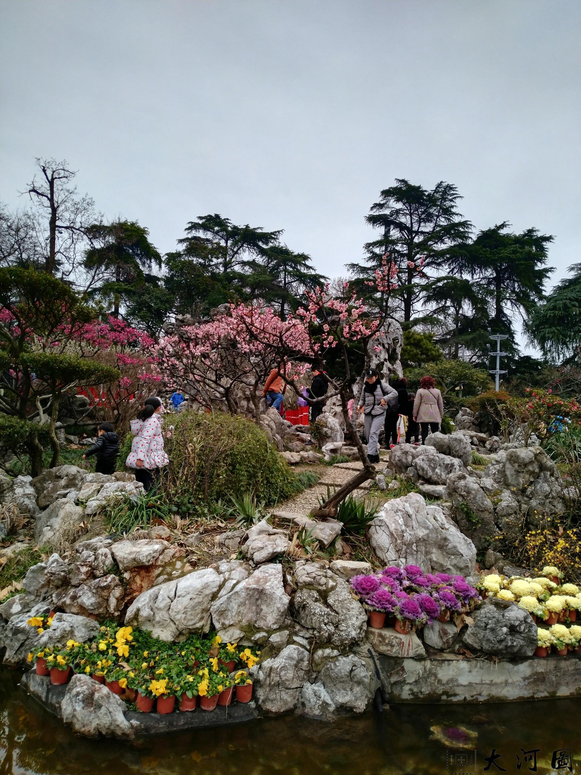 2019年3月的南京玄武湖公园之旅 摄影 第8张