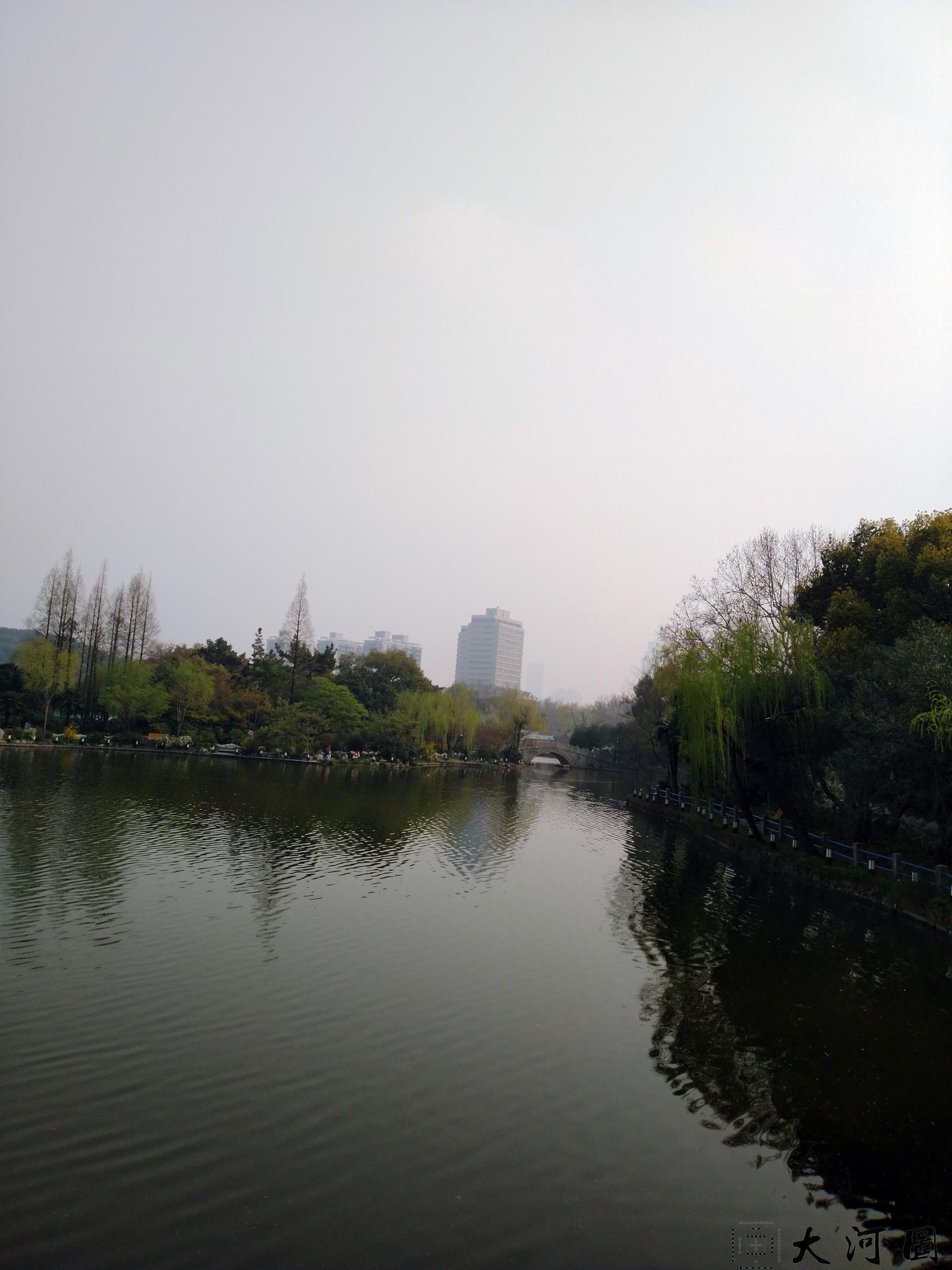 上海长风公园初春之景色幽暗灰沉 摄影 第9张