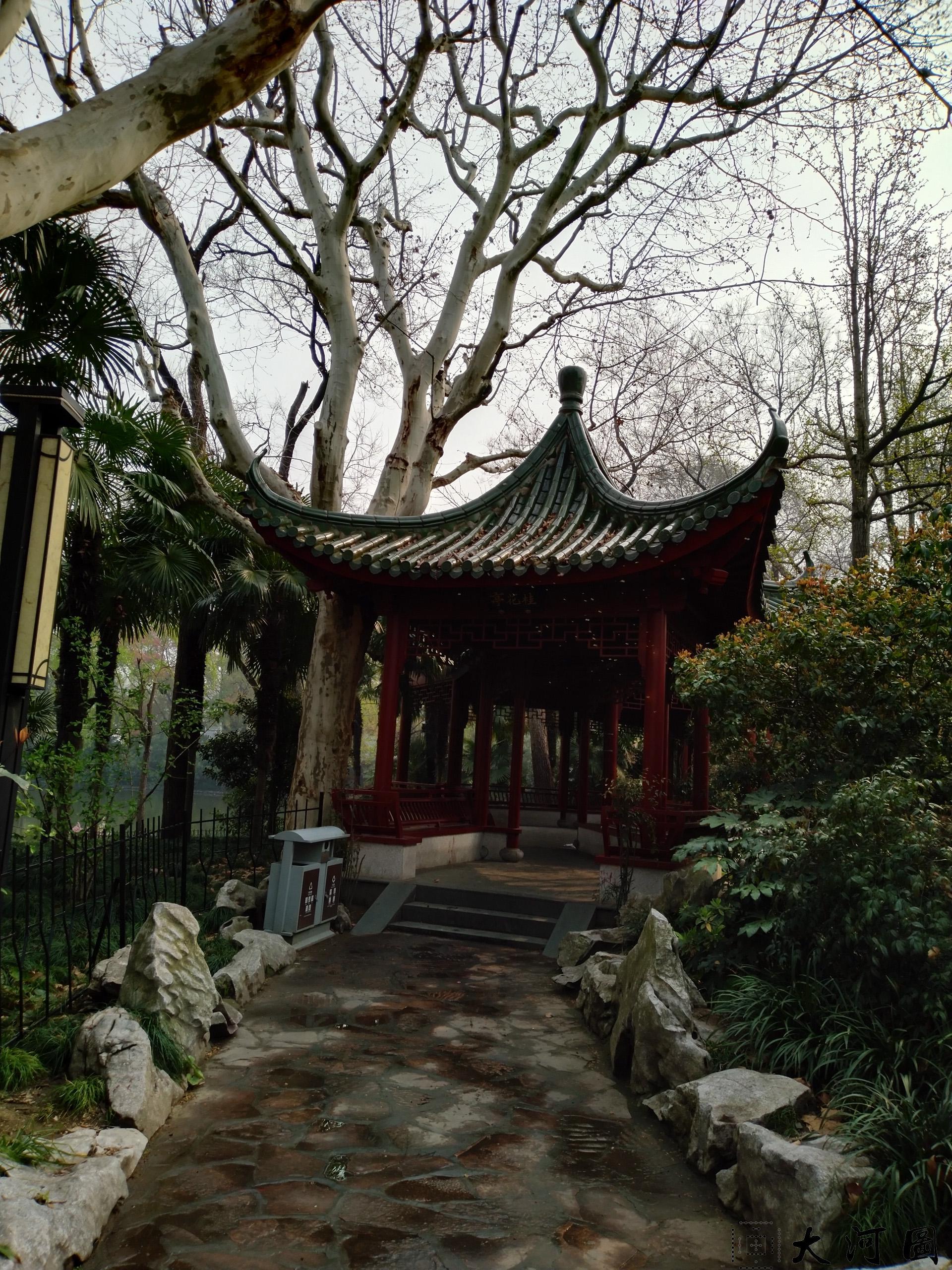 上海长风公园初春之景色幽暗灰沉 摄影 第13张