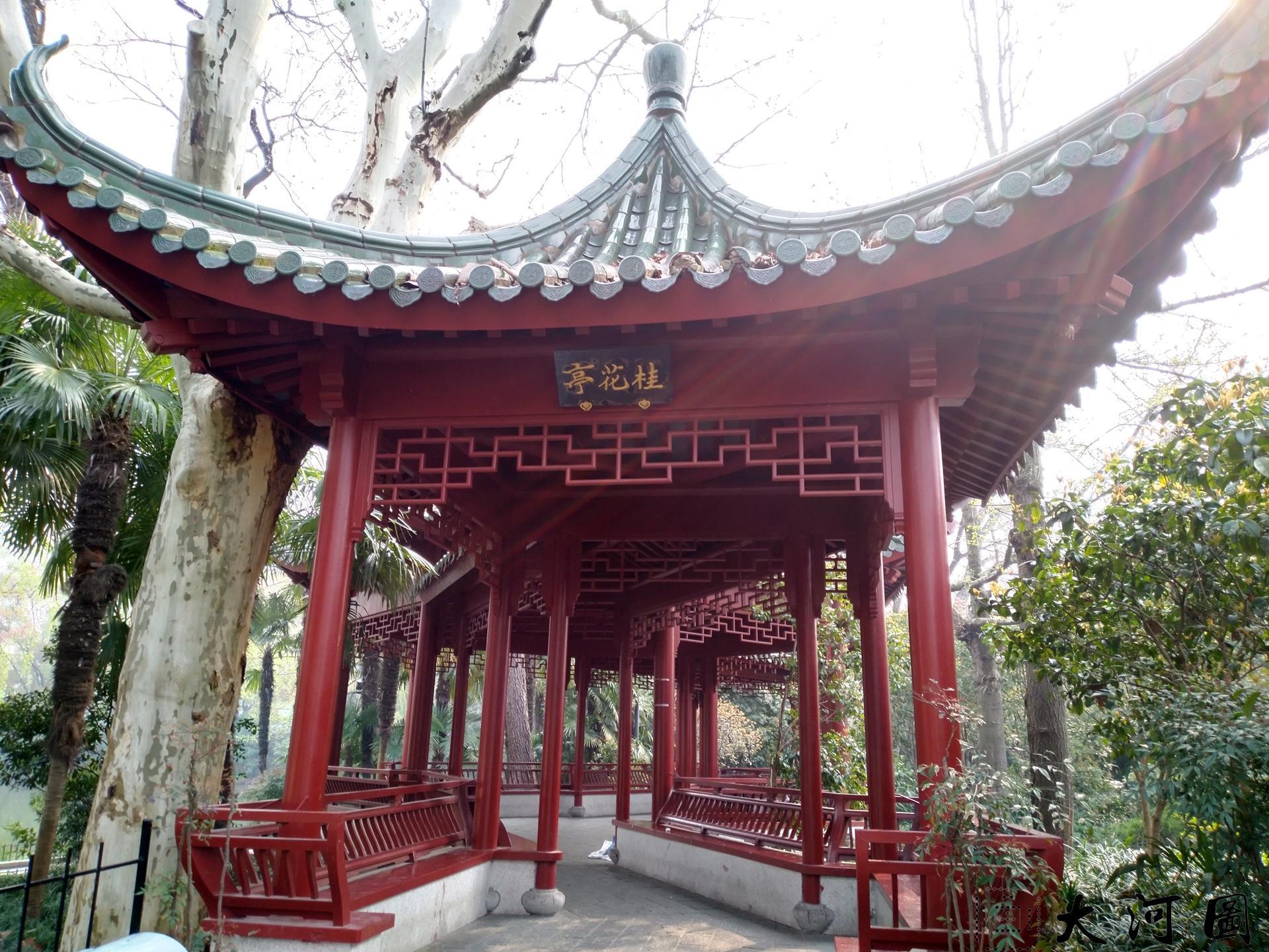 上海长风公园初春之景色幽暗灰沉 摄影 第12张