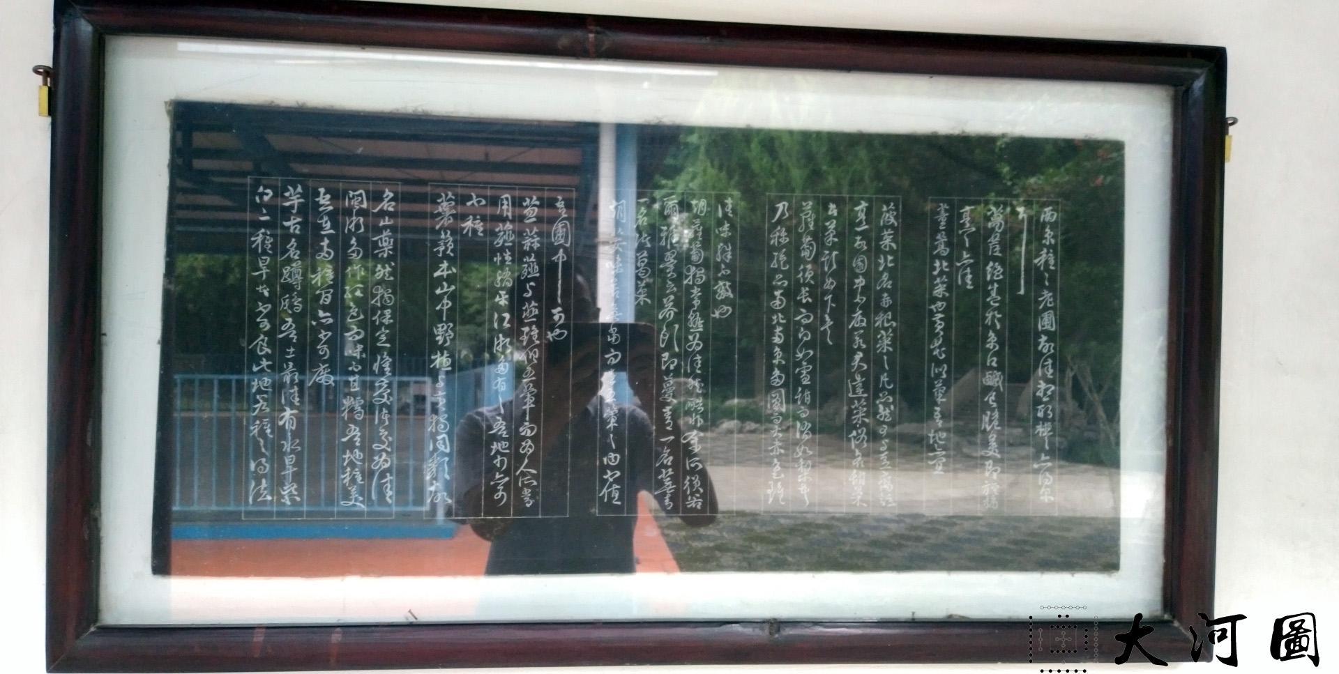 太仓弇山园石刻书法碑 石狮子 墨妙亭 这里是太仓 摄影 第24张