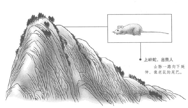 贪狼星峰贵龙和富龙 及真骨脉气 贪狼的上岭蛇和下岭蛇的区别