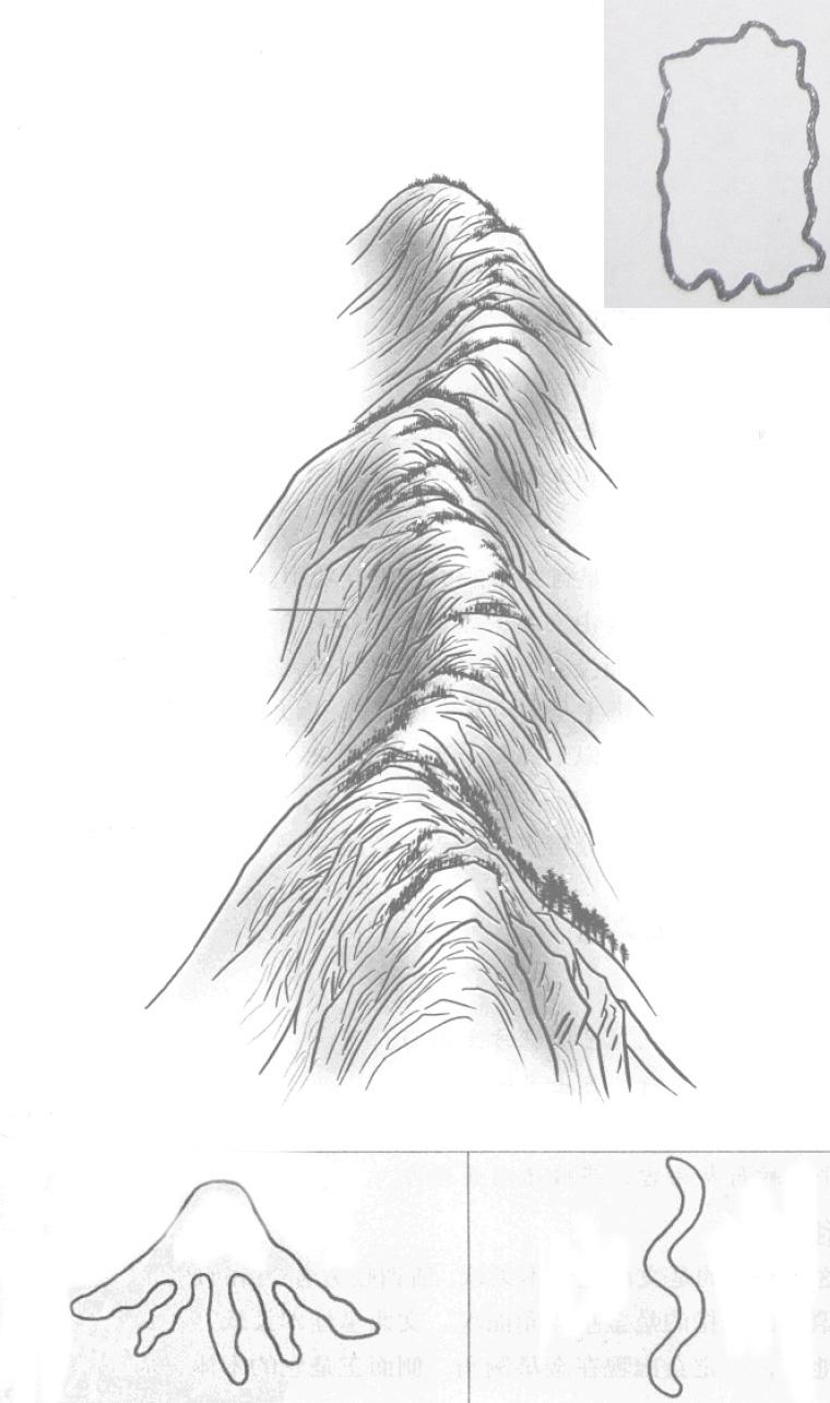 文曲星峰 形长顶曲 生枝如蛇 文曲星的正形和变形 吉凶